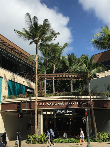 f:id:Hawaii_raoukona:20200113120534p:image