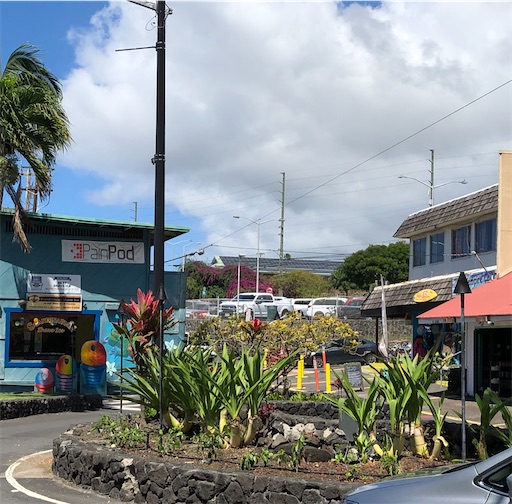 f:id:Hawaii_raoukona:20200519220816j:image