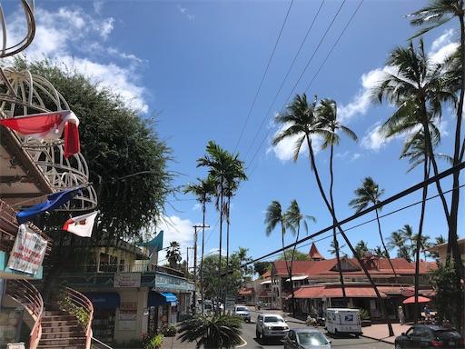 f:id:Hawaii_raoukona:20200519232916j:image