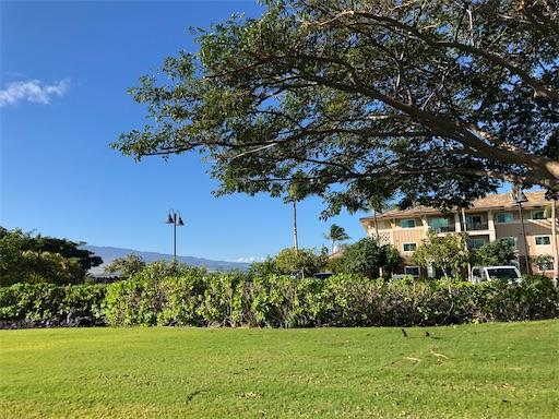 f:id:Hawaii_raoukona:20200906134108j:image
