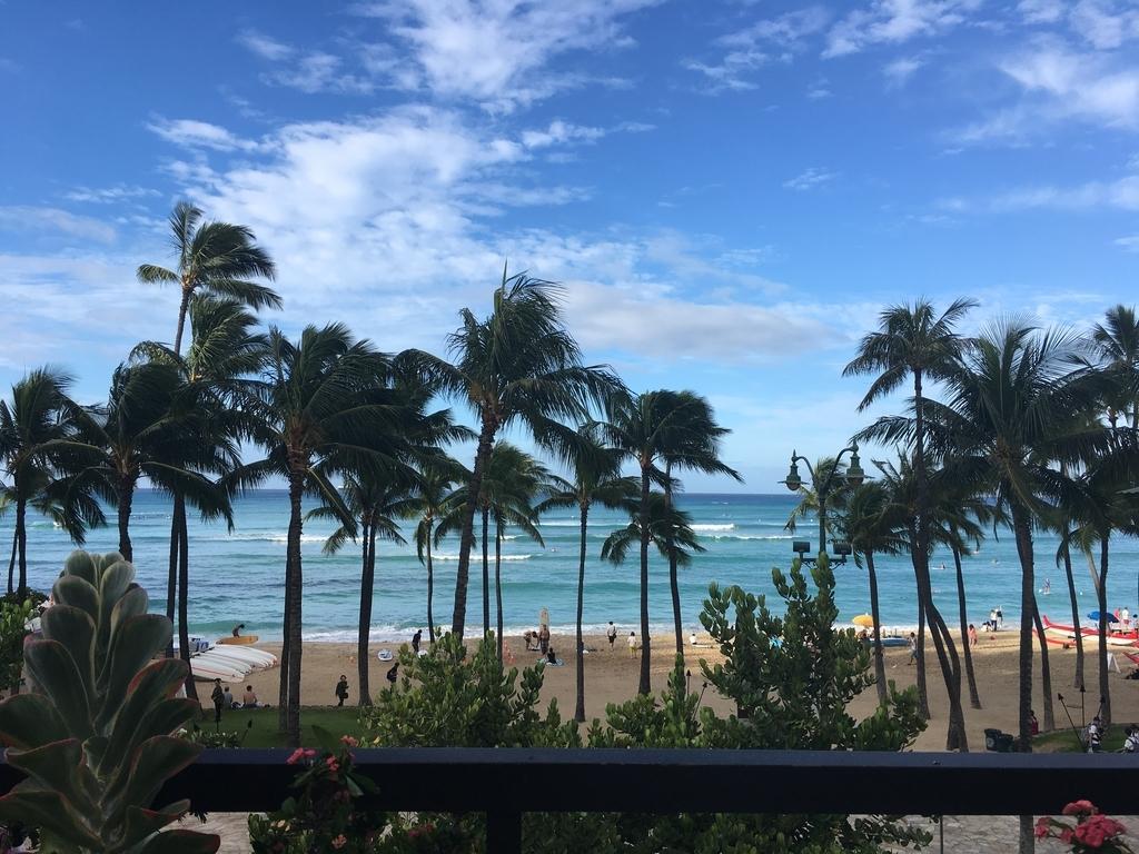 f:id:Hawaiianlily:20181029115152j:plain