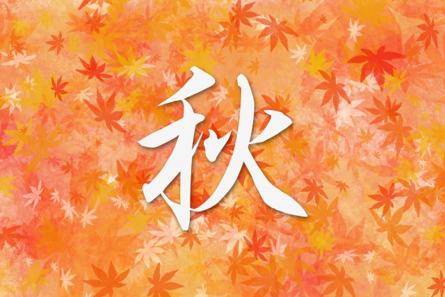 f:id:Hayamizu0818:20171017141644j:plain