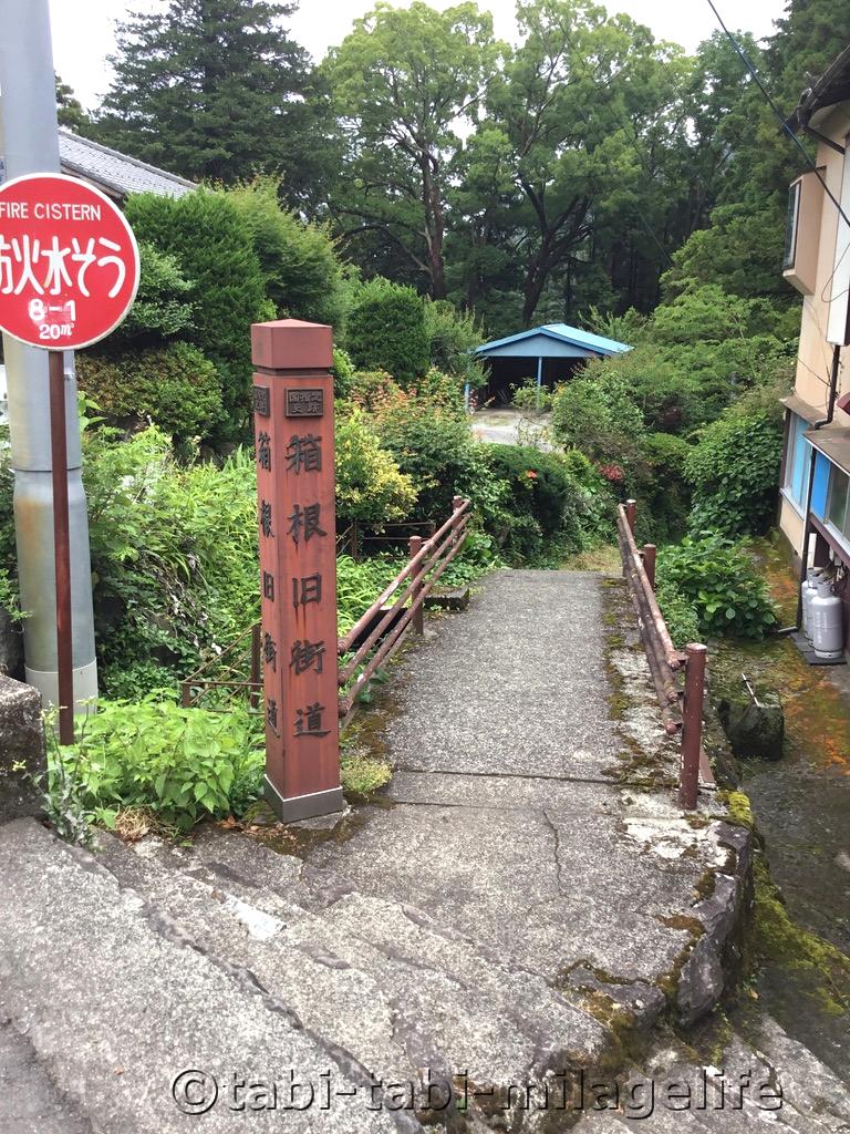 f:id:Hayato_Ryoko:20190710235627p:plain