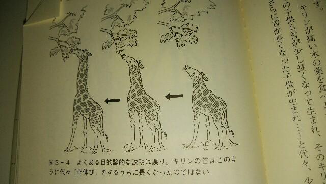 f:id:Hebiyama:20171201103237j:plain