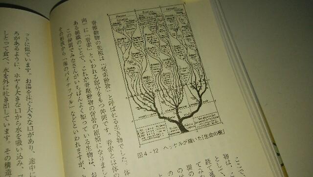 f:id:Hebiyama:20171201105024j:plain