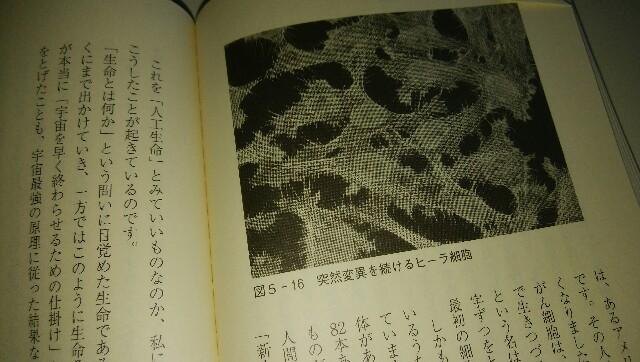 f:id:Hebiyama:20171201110127j:plain