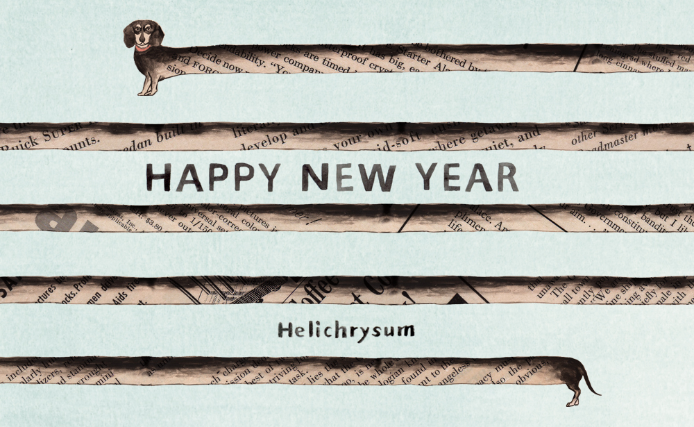 f:id:Helichrysum:20171231144001j:plain