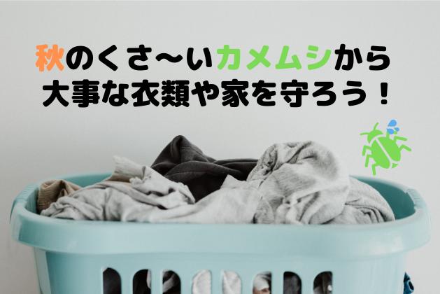 f:id:Heppokotarou:20201005201802p:plain