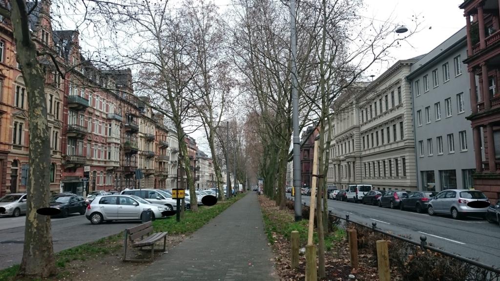 市内の並木道