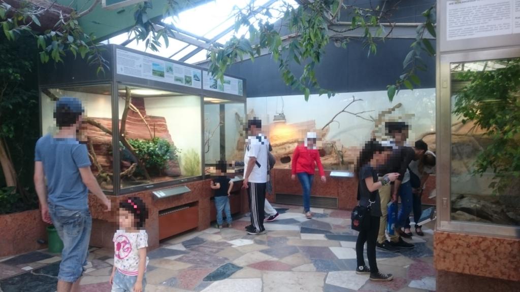 熱帯地方の虫や爬虫類が展示されている施設