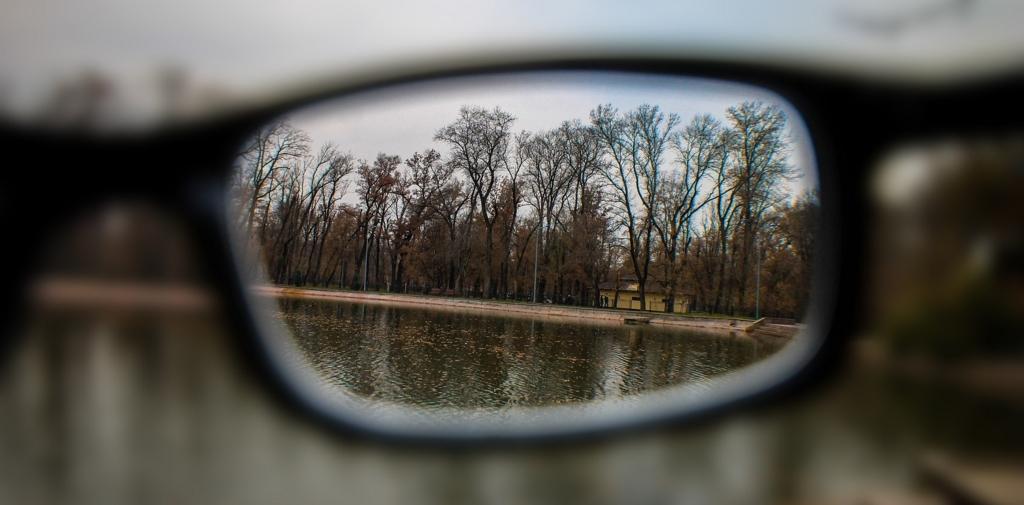 人の眼鏡をもって物事を捉える