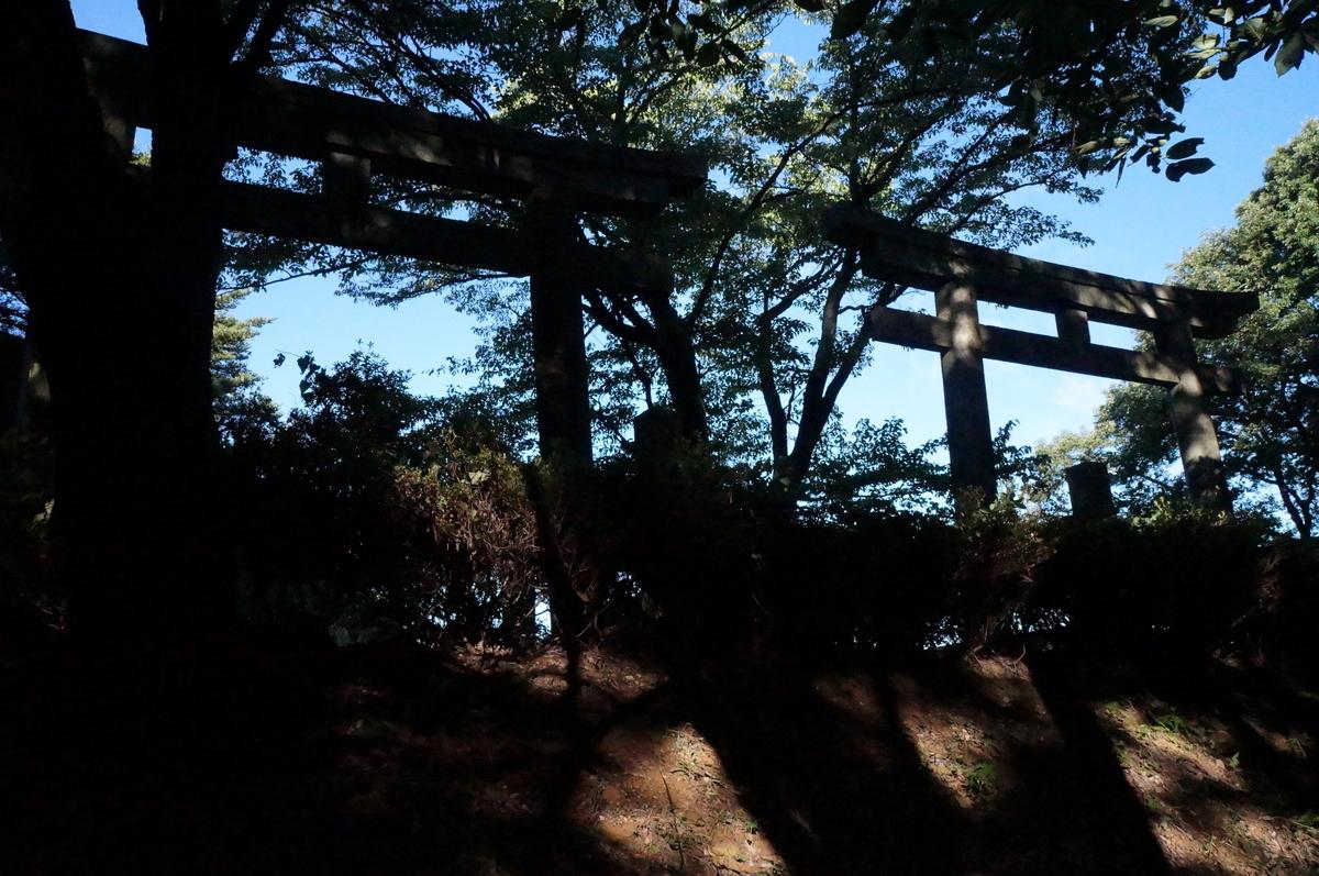 f:id:Hidariuchiwa:20201019203822j:plain