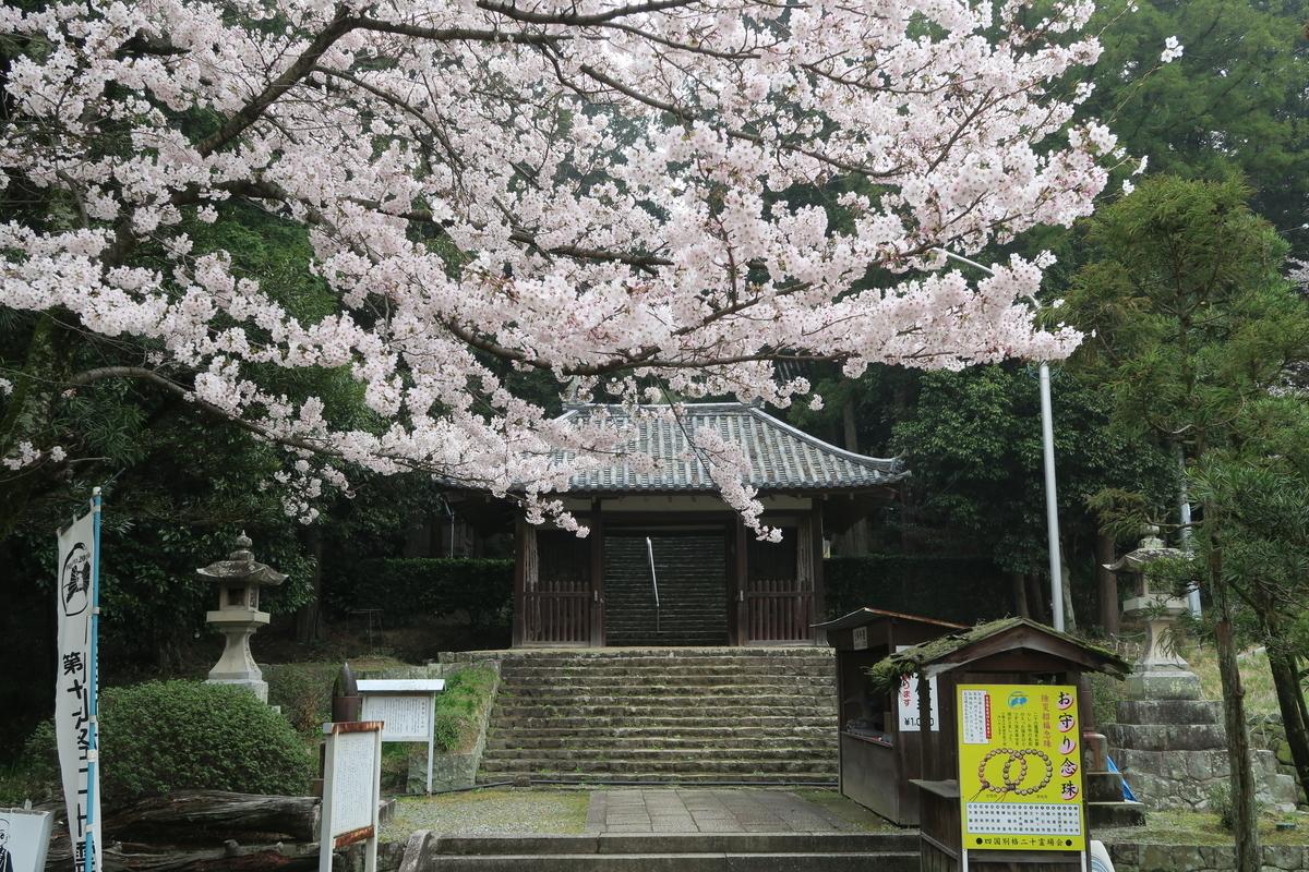 f:id:Hidariuchiwa:20201117221944j:plain