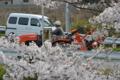 『京都新聞写真コンテスト』春の仕事終り