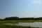 京都新聞写真コンテスト 回送SL北びわこの陰と影