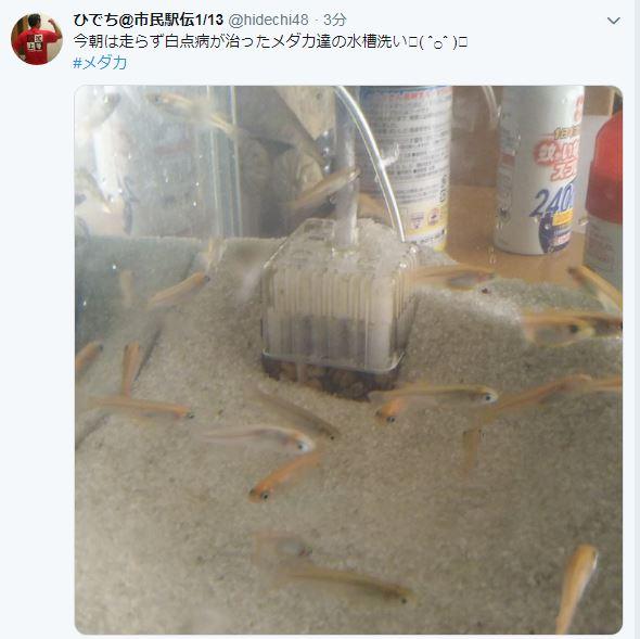 f:id:Hidechi:20190104095939j:plain