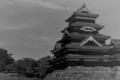 [写真][フィルム][Rollei Retro 400S] Matsumoto-jo Castle / Rollei Retro 400S