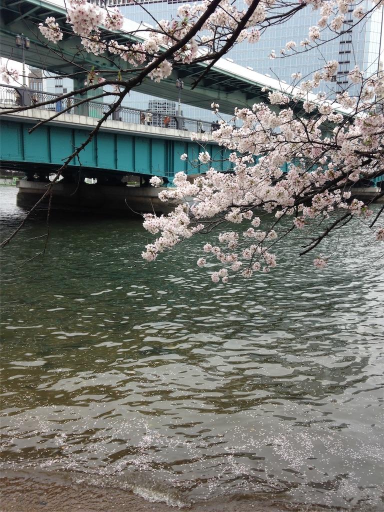 f:id:Himachan:20170411043200j:image