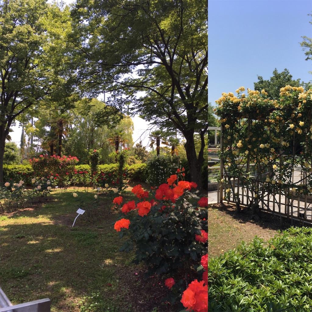 f:id:Himachan:20170520143154j:image