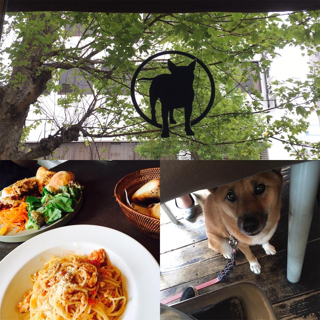f:id:Himachan:20170803111739j:image