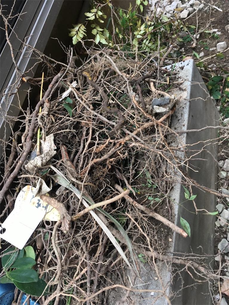 f:id:Himachan:20171107152132j:image