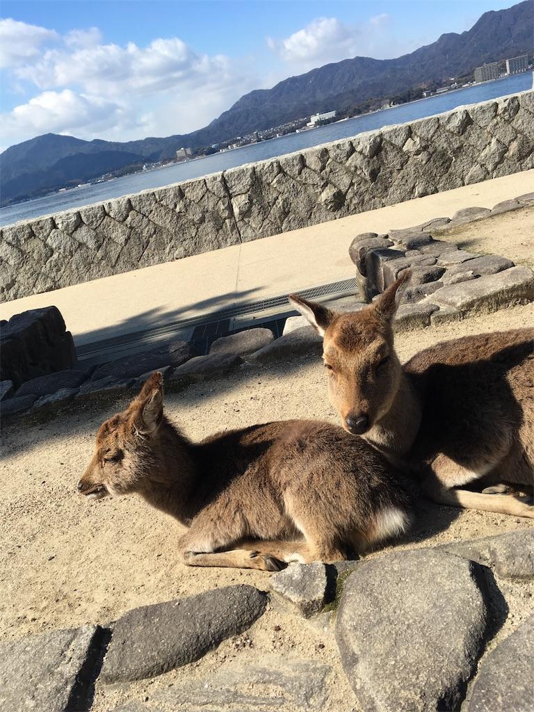 f:id:Himachan:20180207155158j:image