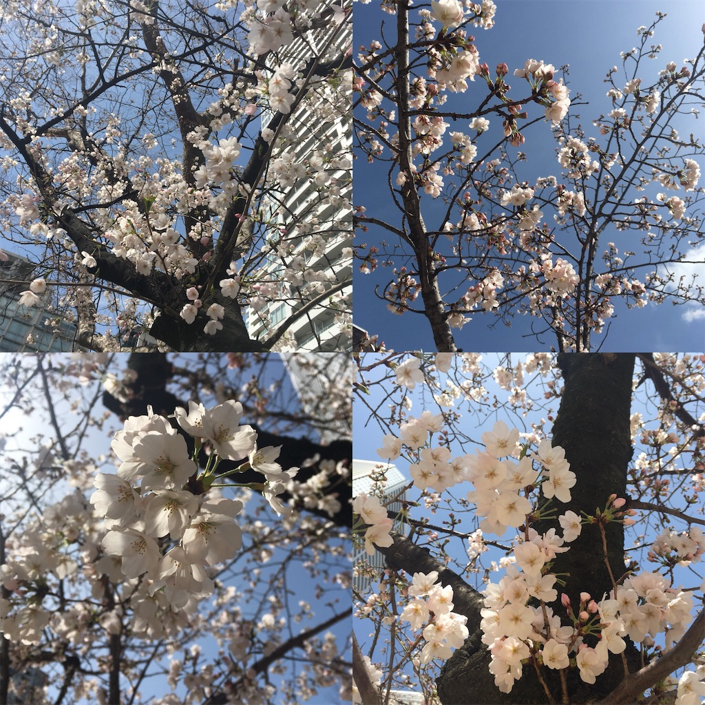 f:id:Himachan:20180323182257j:image