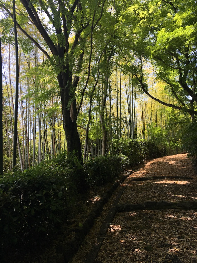 f:id:Himachan:20180512224132j:image