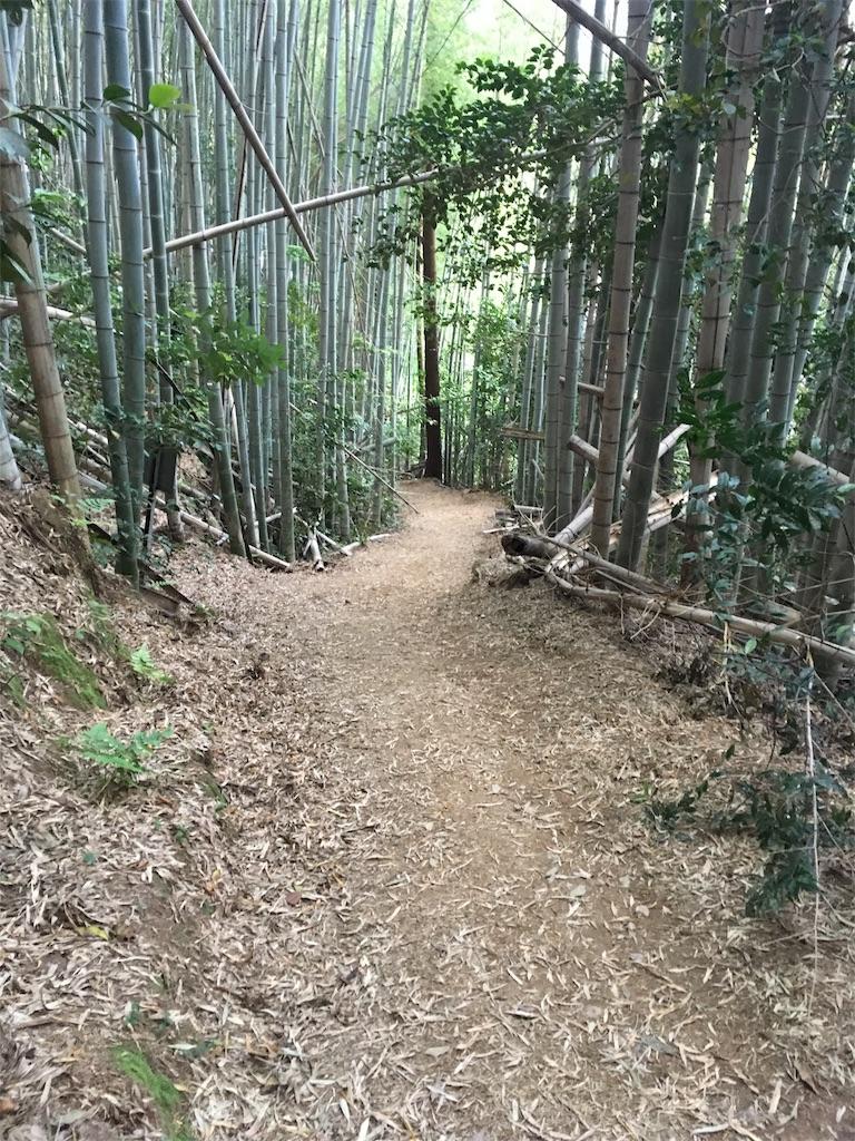 f:id:Himachan:20180513105908j:image
