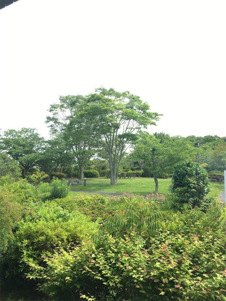 f:id:Himachan:20180526170119j:image