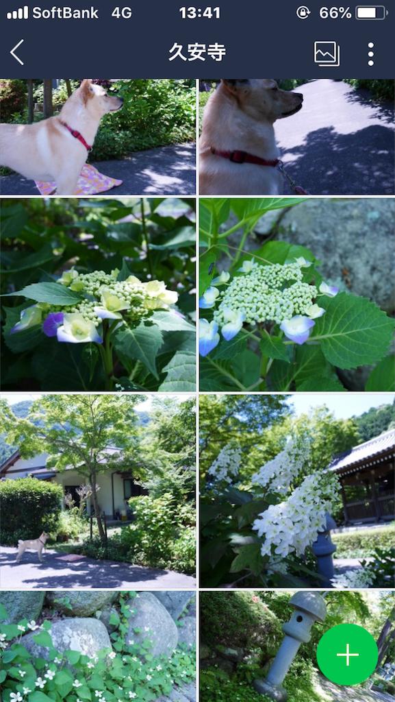 f:id:Himachan:20180602160212p:image