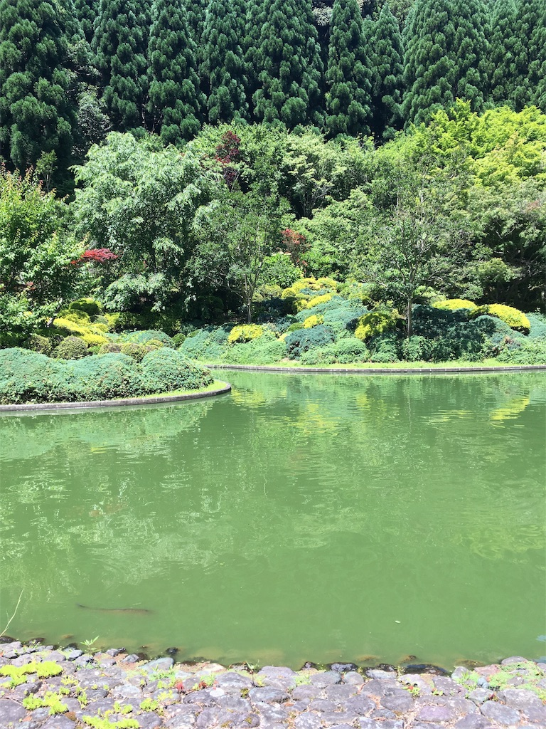 f:id:Himachan:20180602160731j:image