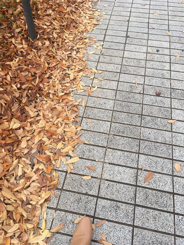 f:id:Himachan:20181116202802j:image