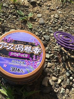 f:id:Himitukichi777:20180812184100j:plain