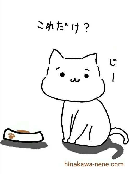 施設 ご飯 例えの猫