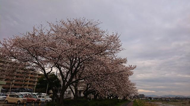 f:id:Hiroaki_M:20200327072149j:image