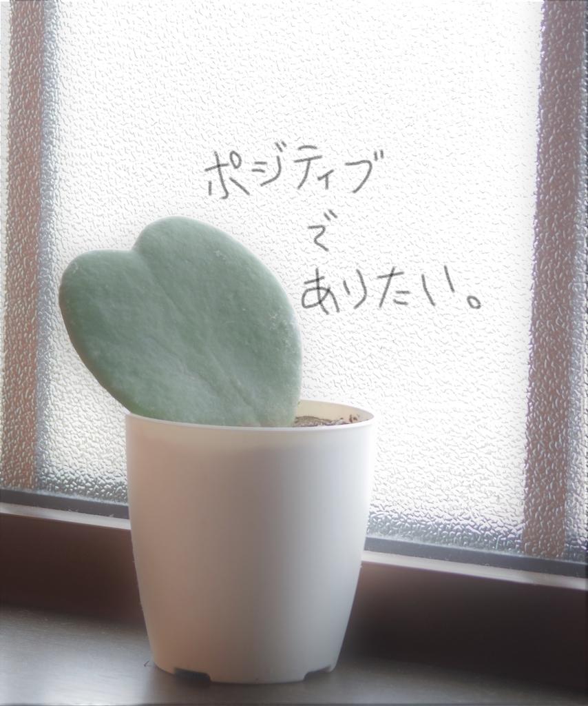 f:id:Hirohirona:20190223075334j:plain