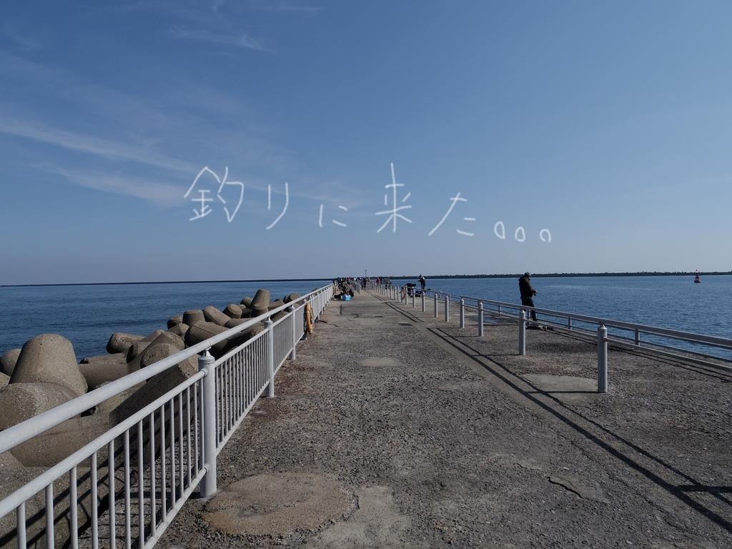 f:id:Hirohirona:20190226063101j:plain