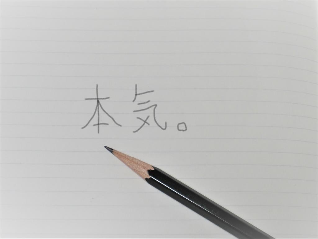 f:id:Hirohirona:20190303103524j:plain