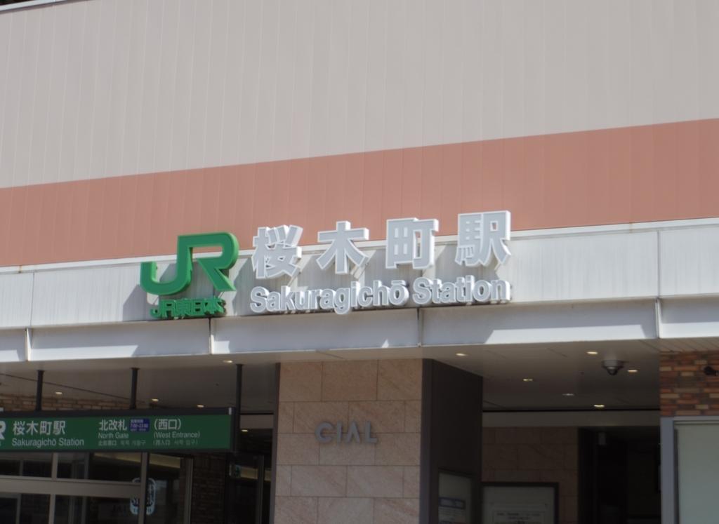 f:id:Hirohirona:20190309232850j:plain