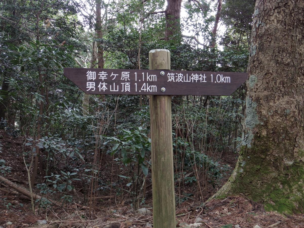 f:id:Hirohirona:20190317223010j:plain