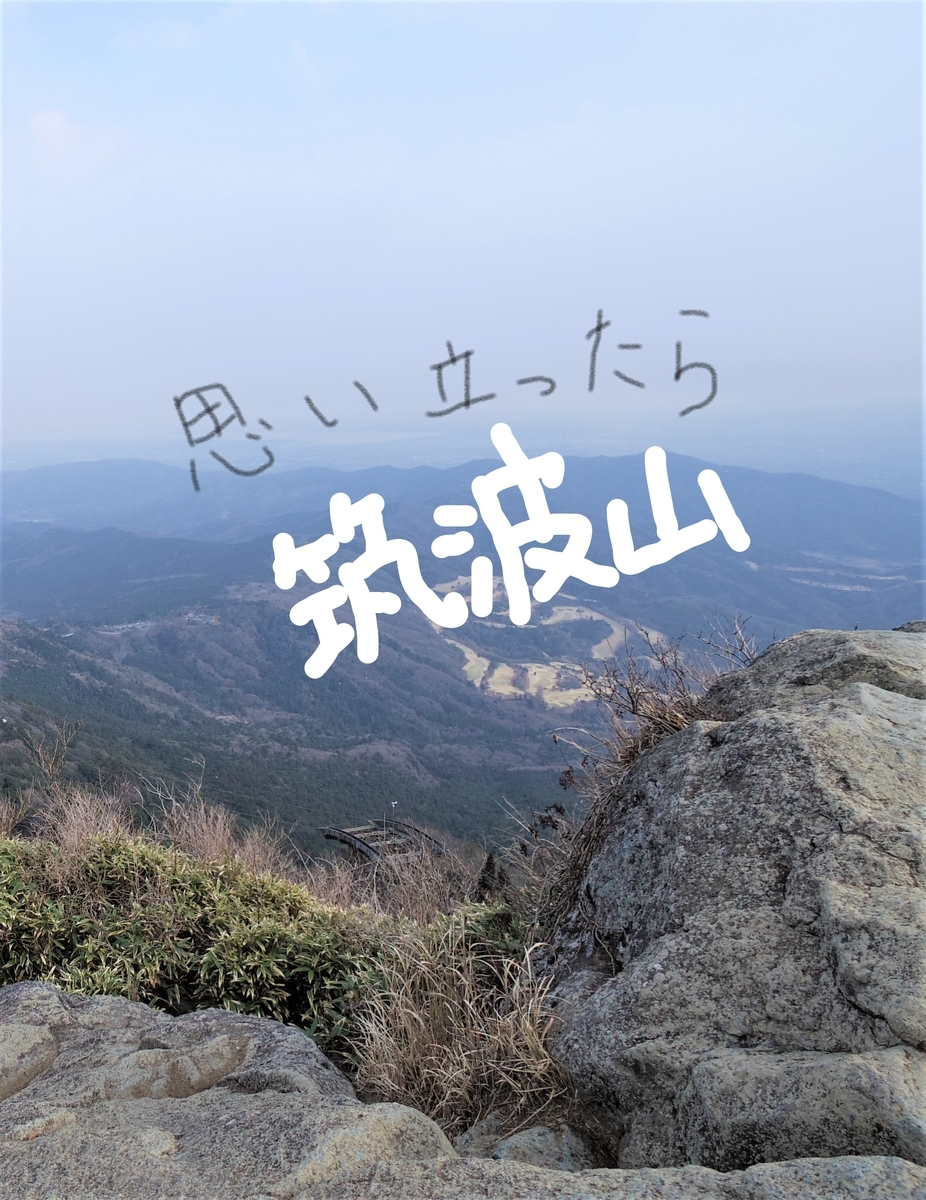 f:id:Hirohirona:20190321110747j:plain