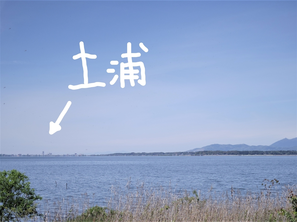 f:id:Hirohirona:20190429094556j:plain