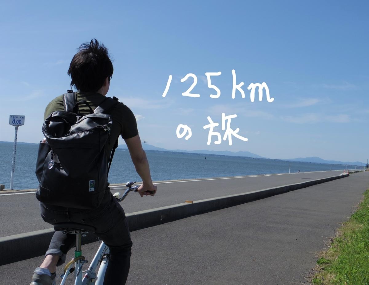 f:id:Hirohirona:20190429122654j:plain