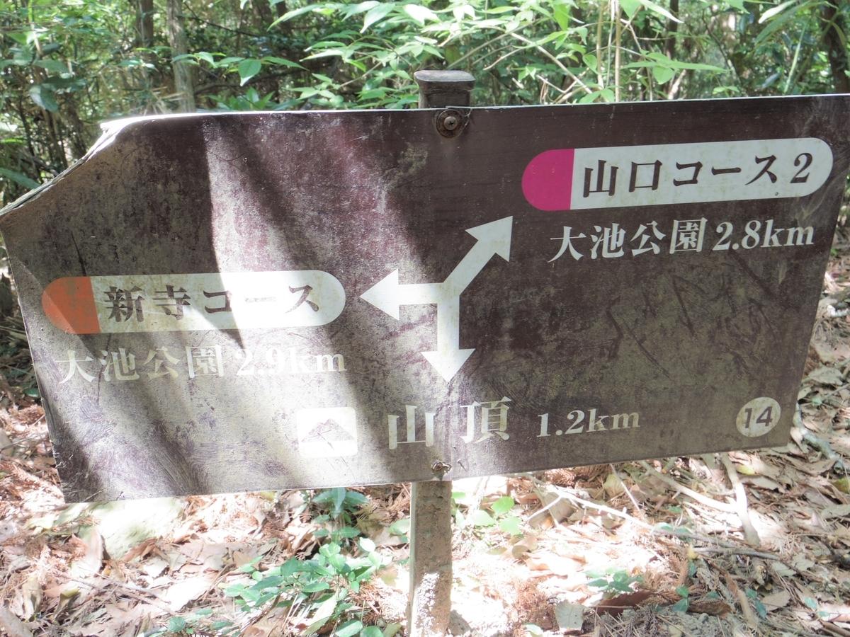 f:id:Hirohirona:20190512074645j:plain