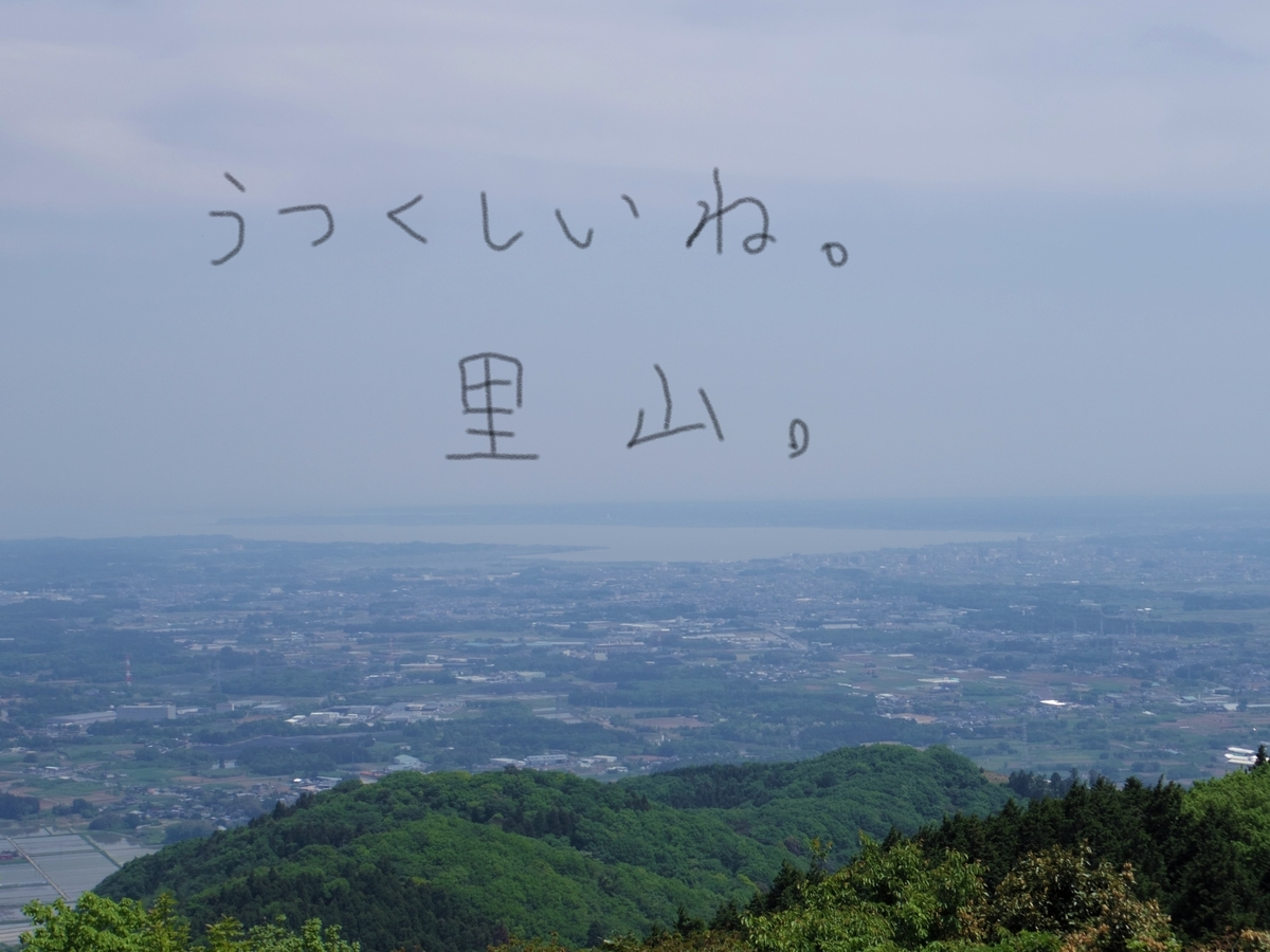 f:id:Hirohirona:20190519113014j:plain