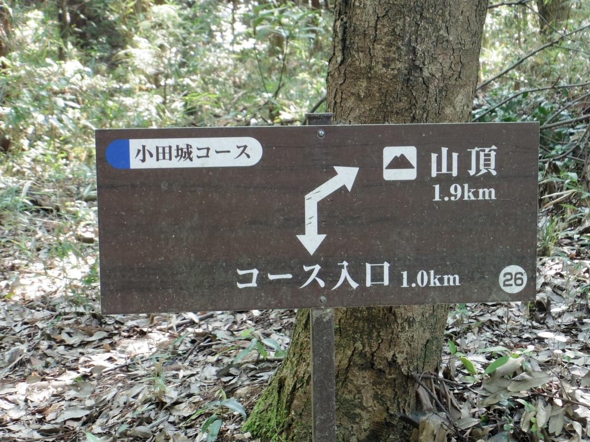 f:id:Hirohirona:20190810214354j:plain