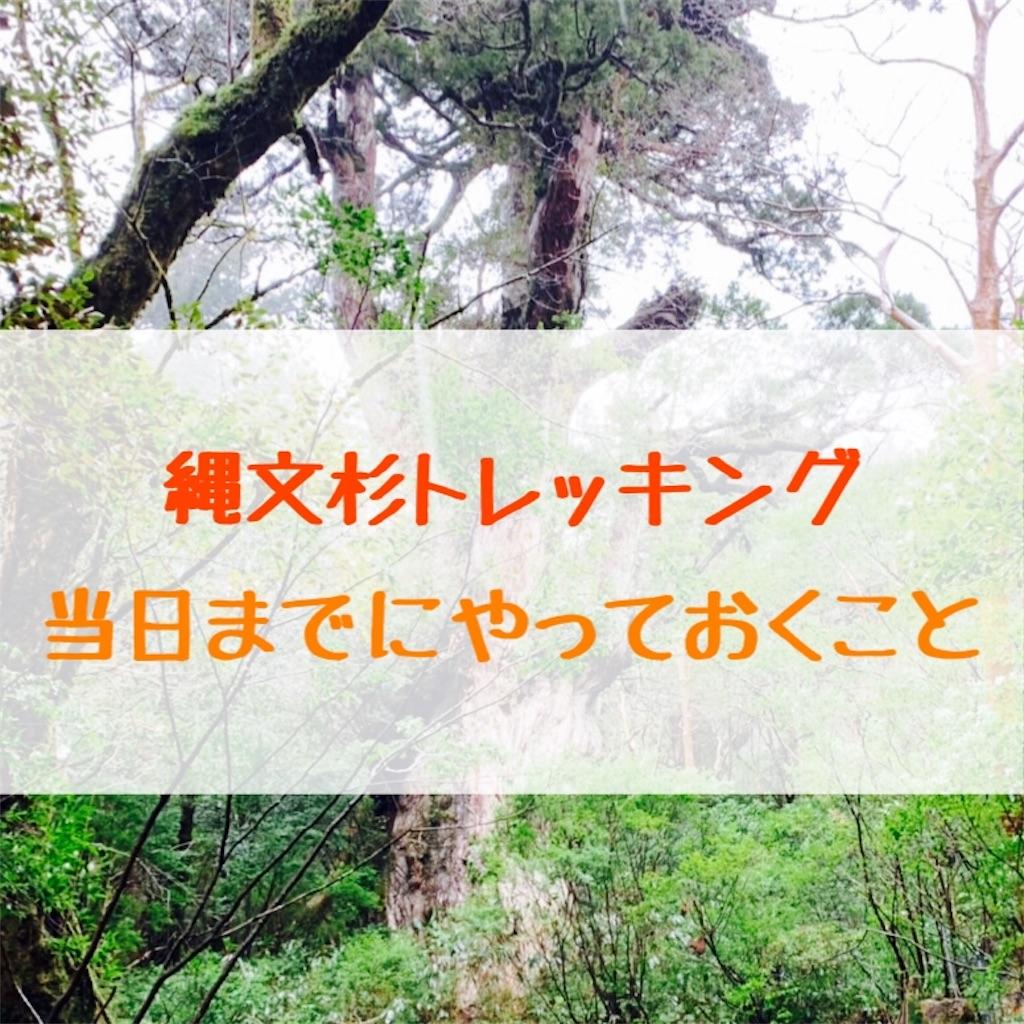 f:id:HirokaK:20190408205919j:image
