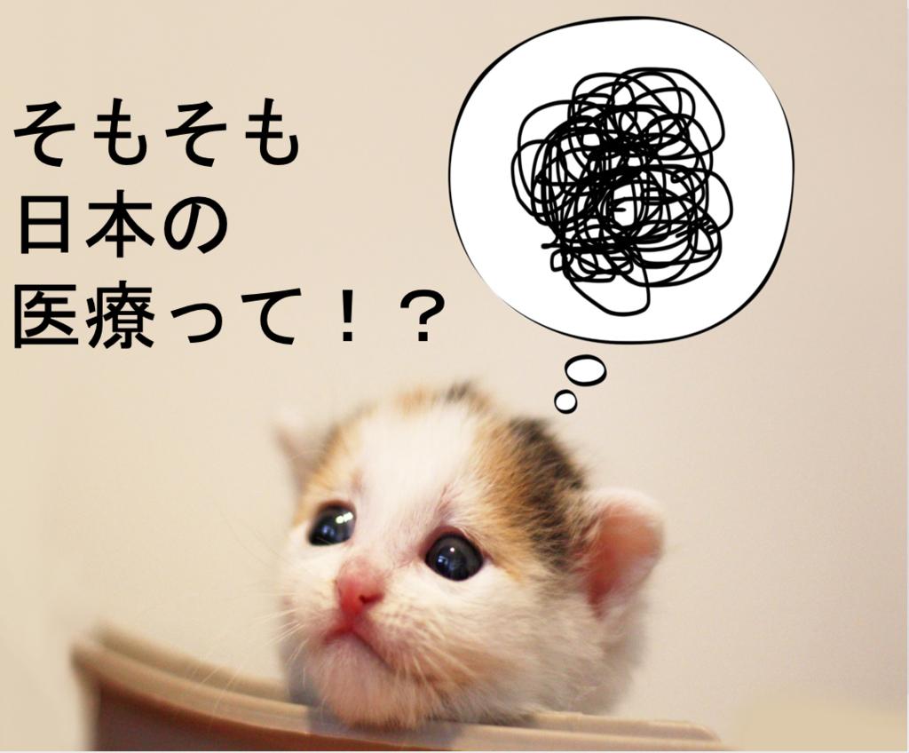 f:id:Hiroki12:20190225213747p:plain