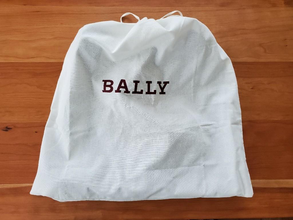 バッグの袋2